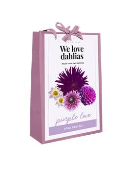 Dahlia Purple Love MIX * 5 Pc / shopping bag