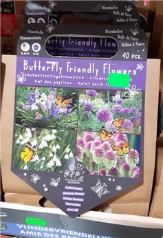 Bulbes utiles papillons (VT) ** A planter en automne **