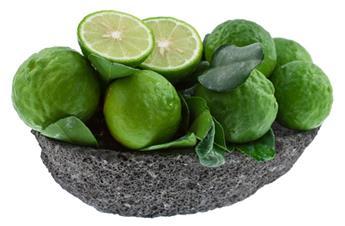 Citrus hystrix Pot C4 - Combawa ou Papeda de Maurice