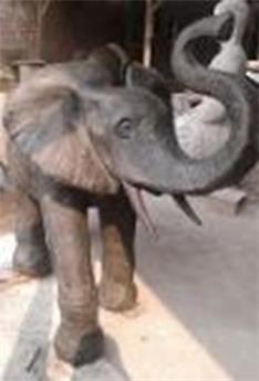 Elephant fontaine Ht 81 cm Long. 100 cm larg. 50 cm (JDB)