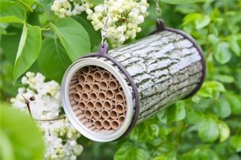 Abri abeilles aspect buche D10 L 16 cm