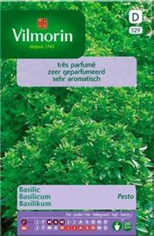 Basilic Pesto - SD (Vilm)