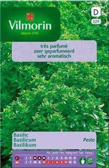 Basilic Pesto - SD