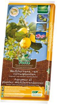 HumuForte Terreau 40 l agrumes orangerie