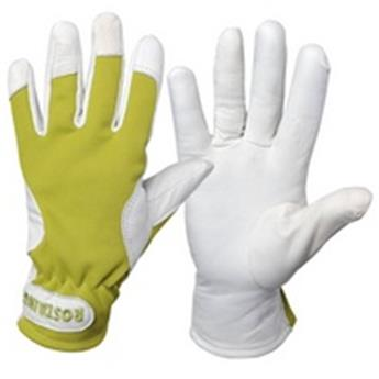 Rostaing Gants essential Iris T6